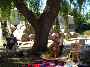 Knitting under the tree NDS 002